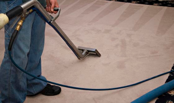 Carpet Cleaning Services near to
